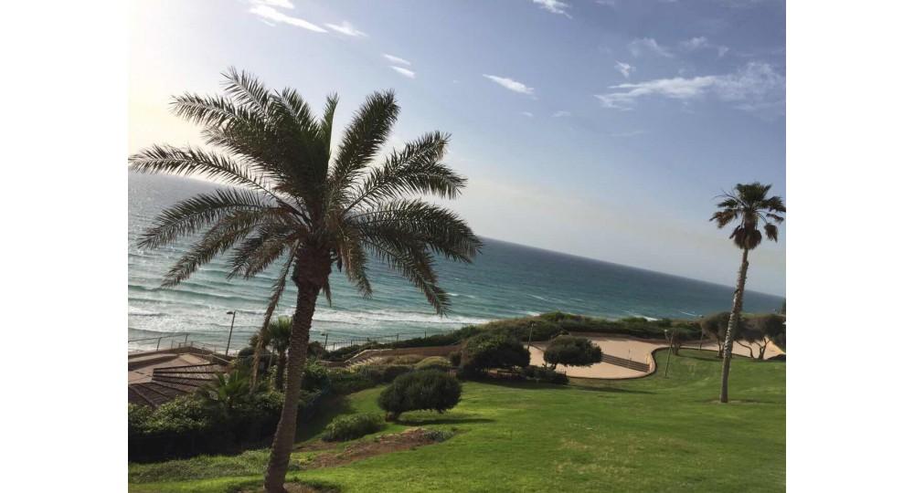 Surgical Quest в Израиле